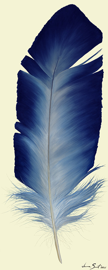 Stellar Blue Feather