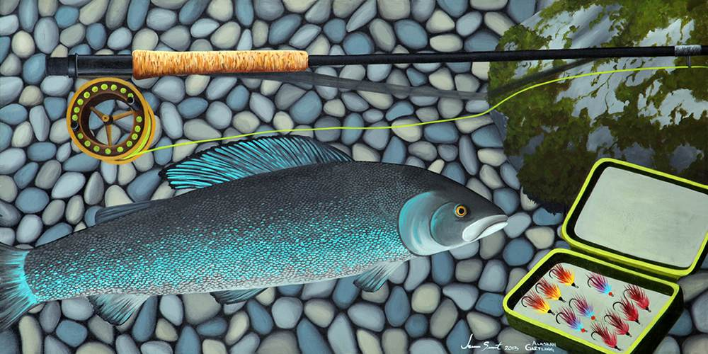 Alaska Grayling